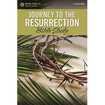 Study: Rvbs Journey to the� Resurrection