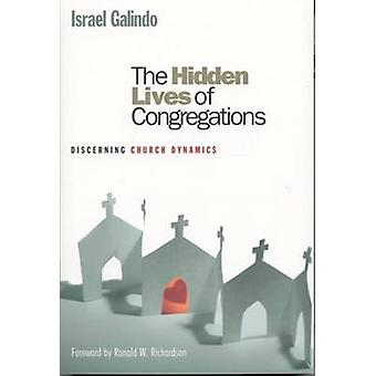 The Hidden Lives of Congregations Discerning Church Dynamics by Galindo & Israel
