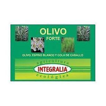 Olive Forte Eco 60 capsules