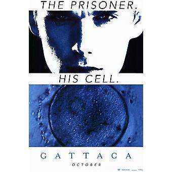 Cartel de la película Gattaca (11 x 17)
