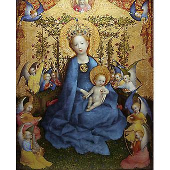 Madonna van de roos Bower, Stefan Lochner, 50x40cm
