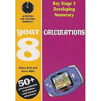Utvikle Numeracy: Beregninger: år 8: aktiviteter for daglige matte leksjon (Developings)