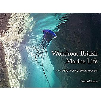 Wondrous British Marine Life - A handbook for coastal explorers by Lou