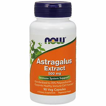 Nyt Foods Astragalus, 500 mg, 90 Vcaps