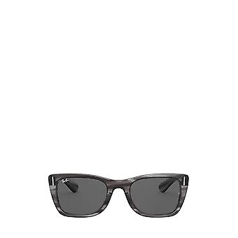 Ray-Ban RB2248 striped grey unisex sunglasses