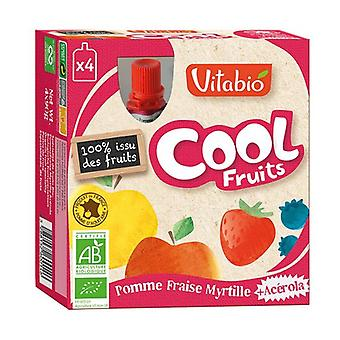 Cool Fruits Pomme de Provence Strawberry Blueberry Acerola 4 units of 90g