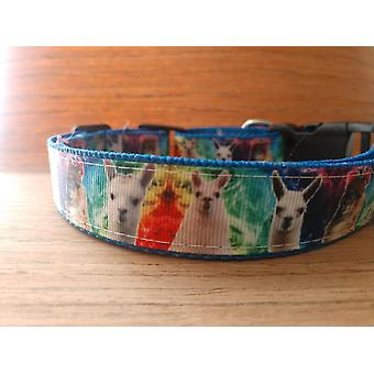 Collar/ Large/ Medium/ Colorful Llamas On Blue