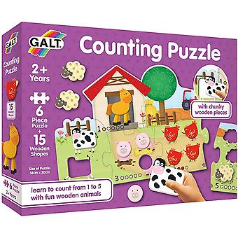 Galt Counting Puzzle