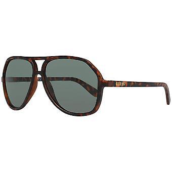 Gissa solglasögon gf0217 6052n