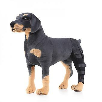 Evago Extra Supportive Dog Canine Rear Leg Hock Joint Wrap Protects Wounds As They Heal Compression Brace Heals And Prevents Injuries And Sprains Help