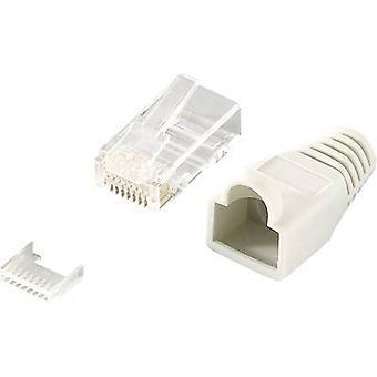 RJ45-Stecker Stecker CAT 6, ungeschirmte Stecker gerade Anzahl der Pins: 8P8C MP0023 grau LogiLink MP0023 100 PC