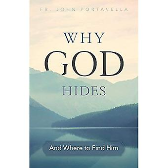 Why God Hides: And Where to Find Him