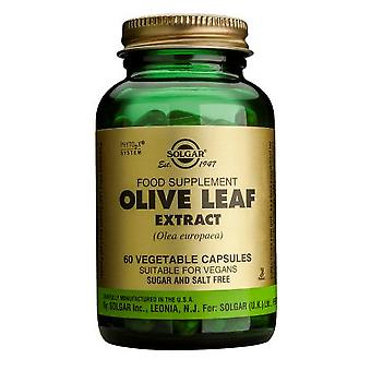 Solgar Standardised - Full Potency Olive Leaf Extract Vegetable Capsules, 60