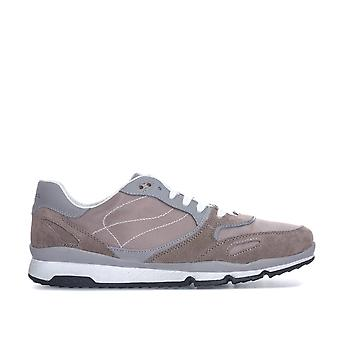 Mens Geox Sandford Trainer in Taupe