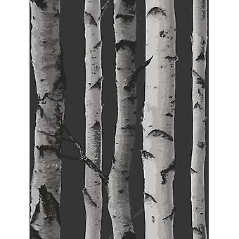 Árvores de bétula wallpaper Fine decor