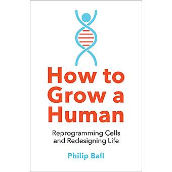 How to Grow a Human by Philip Ball