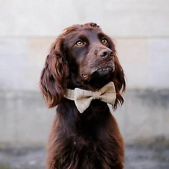 Hund Bowtie - Schiefer Haferflocken
