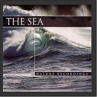 Sea [CD] USA import