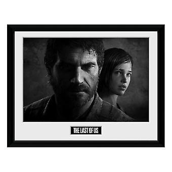 The Last of Us, Tavla - Black and White Nr. 1
