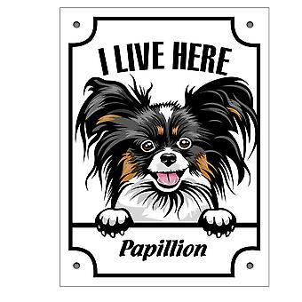 De plaat Papillion Kikande hondenteken