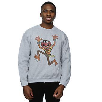 Le Muppets classique animaux Sweatshirt Disney masculine