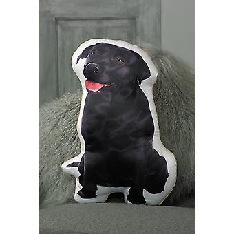 Śliczny czarny labrador w kształcie poduszki