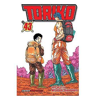 Toriko, Vol. 43 (Toriko)