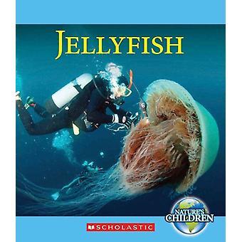 Katie Marsico Jellyfish