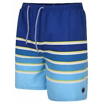 ESPIONAGE Espionage Mens Big Size Stripe Swim Short