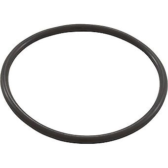 Pentair PacFab 154005 #2-343 Spacer O-Ring