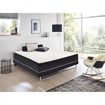 Dormipur Mattress 160x200