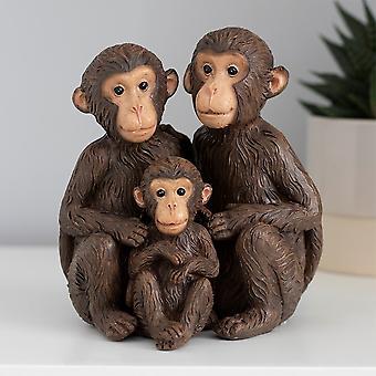 Jotain erilaista vain meidän apinaperheen koristeena