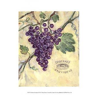 Cabernet Sauvignon Poster Print by Theresa Kasun (10 x 13)