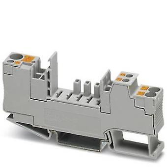Phoenix Contact CB 1/6-2/4 PT-werden DIN Schiene Gehäuse Kunststoff 10 PC