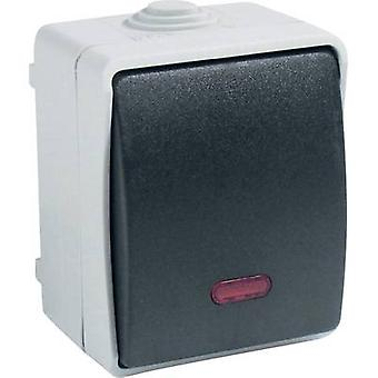 GAO 9876 Wet room switch product range Control switch Standard Grey