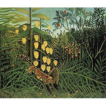 Kampf zwischen einem Tiger und einem Stier, Henri Rousseau, 60x50 cm