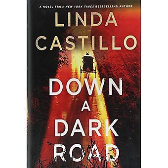 Een donkere weg omlaag: een Kate Burkholder roman