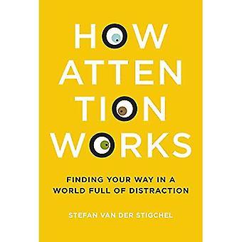 De werking van aandacht: Het vinden van uw weg in een wereld vol afleiding (The MIT Press)