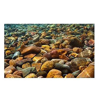Sandimas Poster Aquarium 3D Rio (Fische , Aquariumsdeko , Poster)