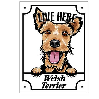 Plaque d'étain Welsh Terrier Kikande signe de chien