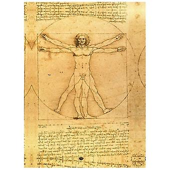 Print on canvas - L&Apos;Vitruvian Man - Leonardo da Vinci - Painting on Canvas, Wall Decoration