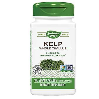 Nature's Way Kelp, 100 Casquettes