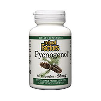 Luonnolliset tekijät Pycnogenol, 25 mg, 60 Korkkia