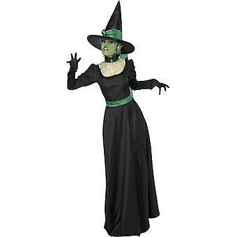 Heks kostuum tovenares heks horror kostuum Halloween