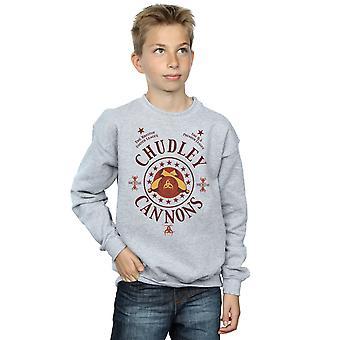 Harry Potter Boys Chudley Cannons Logo Sweatshirt