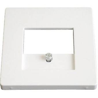 منفذ USB تغطية بركير Q.3، Q.1 القطبي الأبيض 10336089