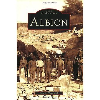 Albion by Avis A Townsend - 9780738539294 Book
