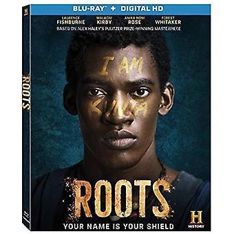 Wurzeln [Blu-Ray] USA import