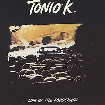 Tonio K. - Life in the Foodchain [CD] USA import