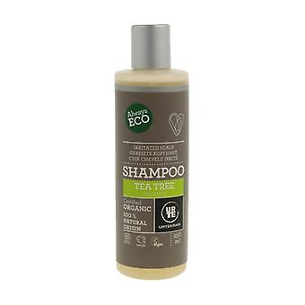 Antibakteriel Tea Tree Shampoo 250 ml